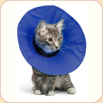 EZ Fabric Collar for Convalescing Pets