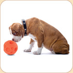 Orange Treat Ball--3 sizes