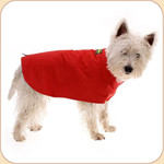 Lined Waterproof Red Raincoat