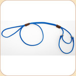 Nylon Martingale Blue Leash