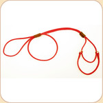 Nylon Martingale Red Leash