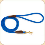 Nylon Snap Leash Blue