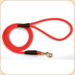 Nylon Snap Leash Red