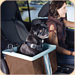 Car Booster Top Box Seat in Brown
