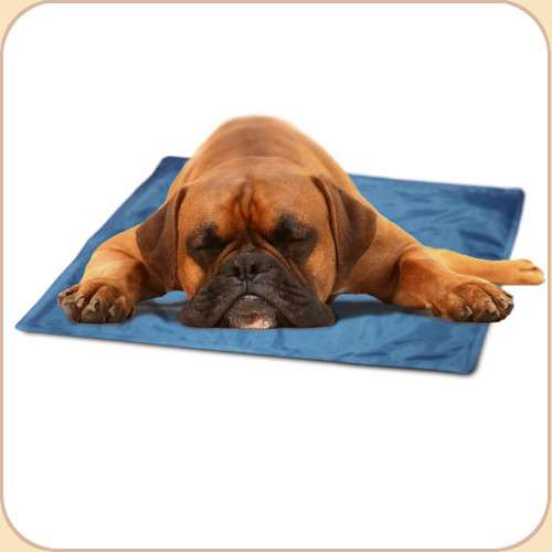 cool mat 5 sizes beowoof provisions for pets. Black Bedroom Furniture Sets. Home Design Ideas