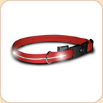 LED Illuminated Collar in Red