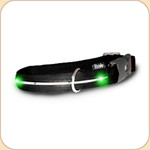 LED Illuminated Collar in Black