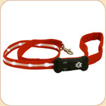 LED Illuminated Leash in Red