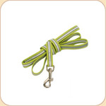 Reflective 5' Leash in Lime