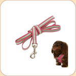 Reflective 5' Leash in Berry