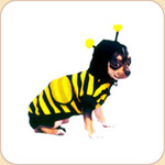 Honey Bee Costume SALE 10% OFF