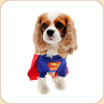 Super Dog Costume SALE 10% OFF
