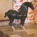 Black Stallion Medium