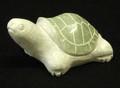 Marble Sea Turtle
