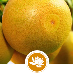 enflurage-fruits.jpg