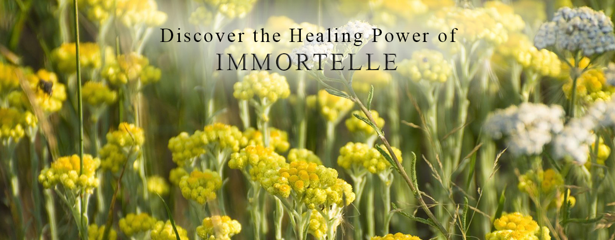 immortelle-homepage-2.jpg