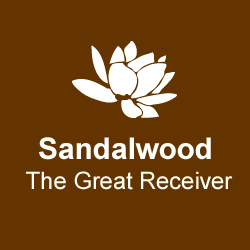 sandalwood-the-great-receiver.jpg