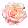 Trash Monkey ** Pink Champagne Rose Flower Hair Clip