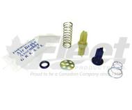 109494-G3 - MODEL IP CHECK VALVE KIT