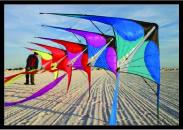 Dual Line Kites