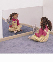 Rectangular Mirror 48 X 24