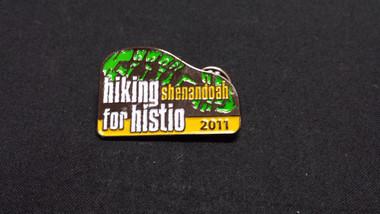 2011 Pin