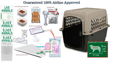 Bruno pet airline all in one package