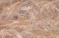 SISAL. Cotton and JUTE - Exotic birds 1/2 Lb