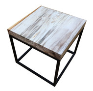 Petrified Wood - Table Top Square - PT-SQU-003