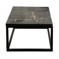 Petrified Wood - Table Top Square - PT-SQU-001