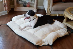 Extra Large Dog Bed & Mat D04HML/MB-X