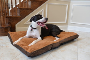 Large Dog Mat M05HKF/ZS-L