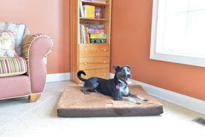 Large Memory Foam Dog Mat M06HKF/ZS-L