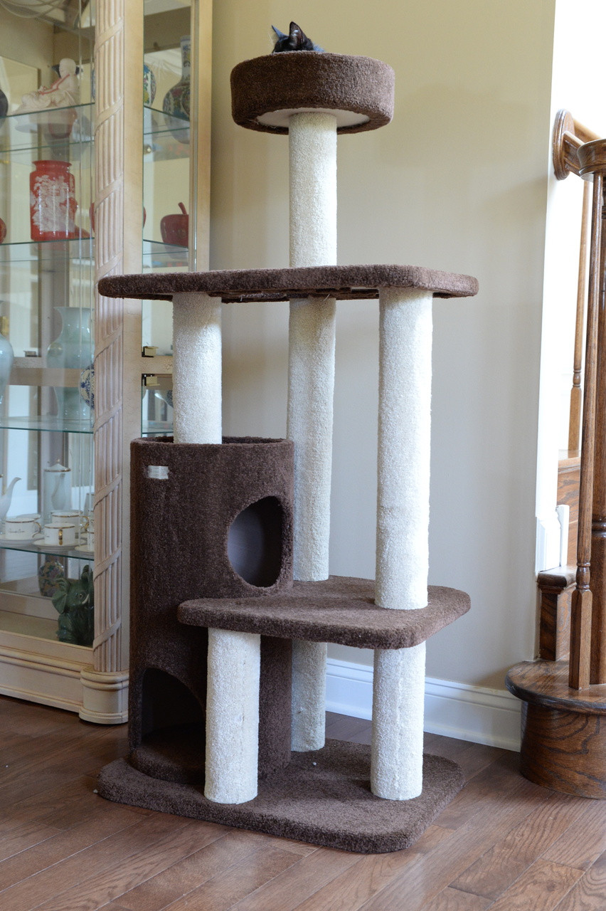 Premium Carpeted Cat Tree F5602 Armarkat Online Store
