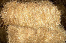 Straw bales - no weed seeds