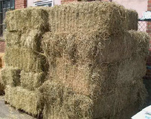 Baled Feed Hay