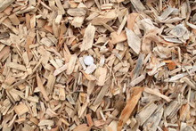 Clean mill wood chips