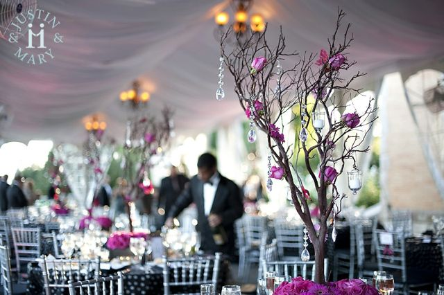 pink-manzanita-trees-at-cairnwood-by-belvedere-flowers.jpg