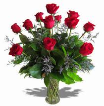 Dozen Red Premium Roses