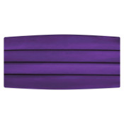 Satin Cummerbund and Bow Tie Set  in Plum
