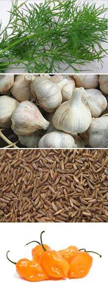 health-benefits-garlic-caraway-dill-peppers.jpg