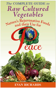 raw-cultured-vegetables-book.jpg