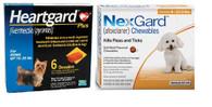 NexGard and Heartgard Combo for Dogs 4-10 lbs - 6 Pack