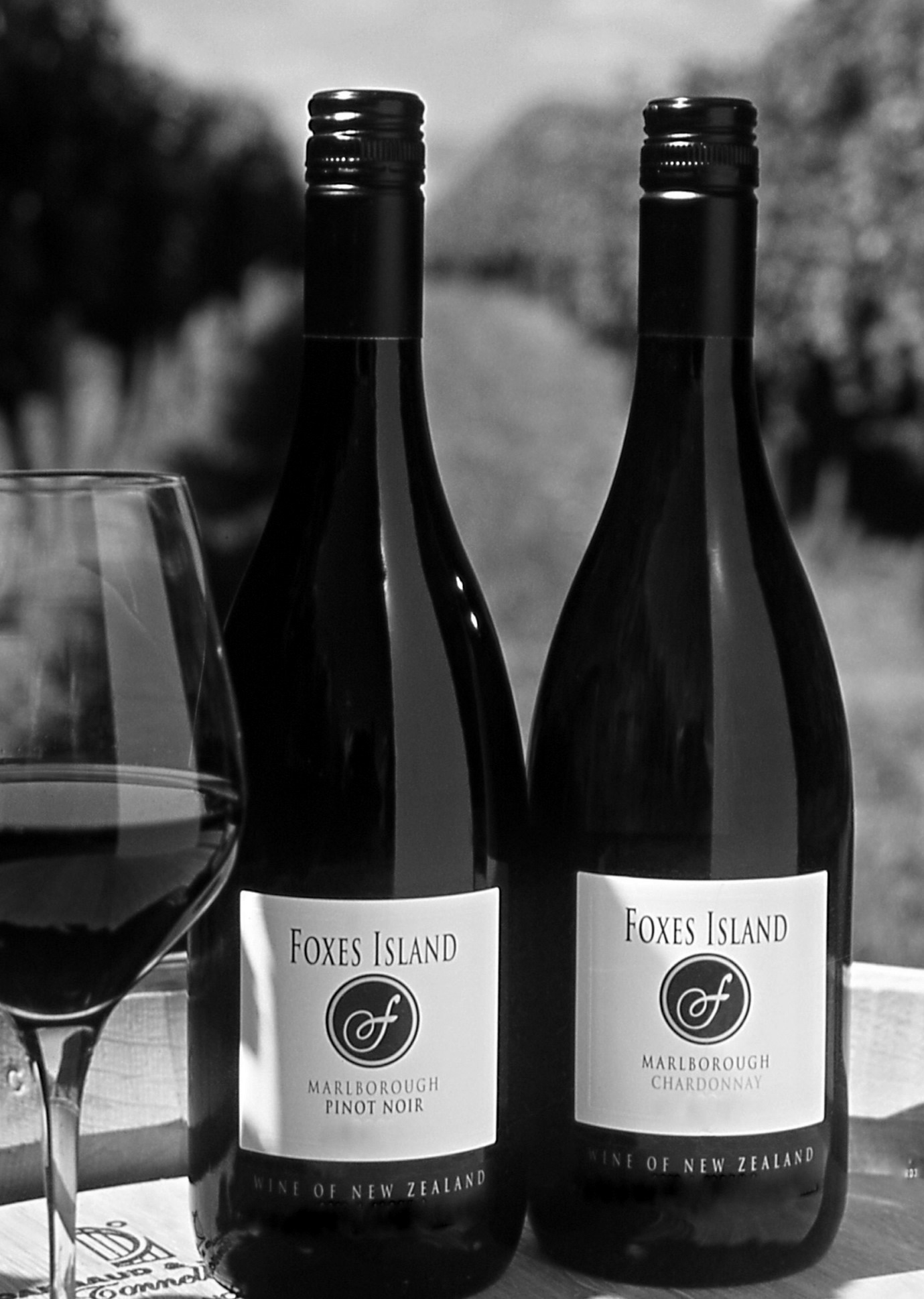 Foxes Island Wines Since 1992
