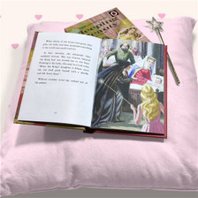 Personalised Sleeping Beauty Ladybird Book From Something Personal