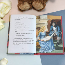 Personalised Beauty & The Beast Ladybird Book From Something Personal