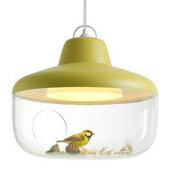 CLEARANCE Eno Studio Favourite Things Pendant Lamp Mustard