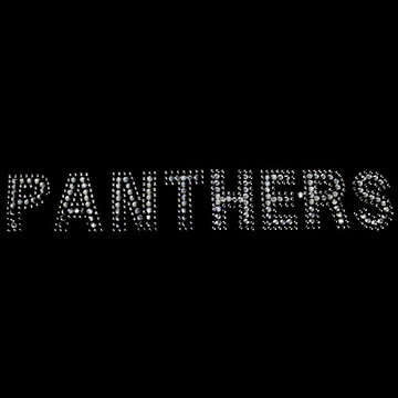 HP86- Panthers - Rhinestones/Studs
