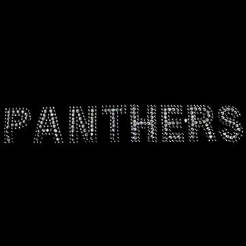 HP86- Panthers - Rhinestones/Studs