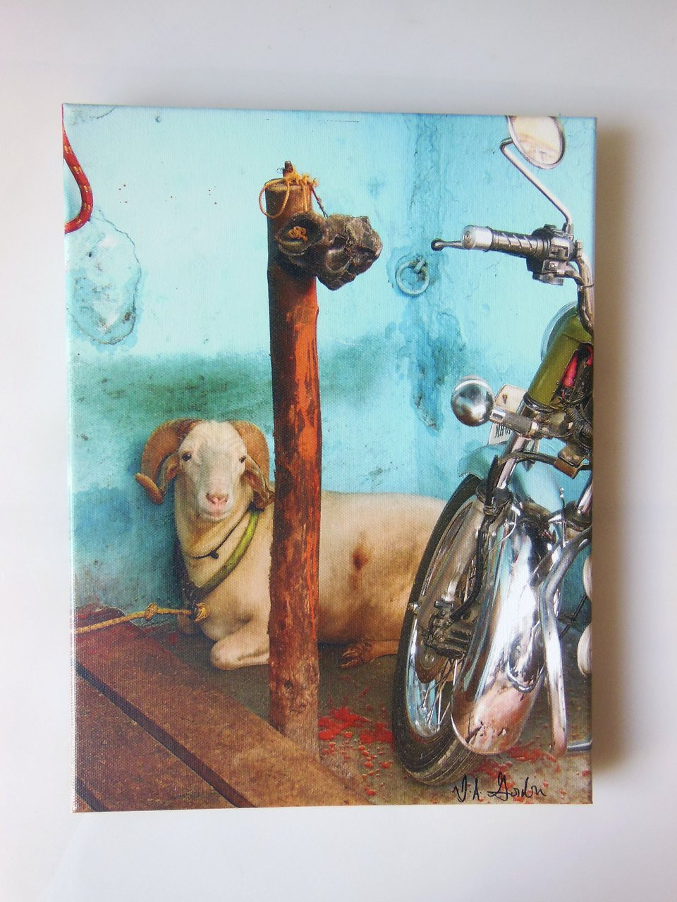 Mumbai, Bike with beast.  Giclee